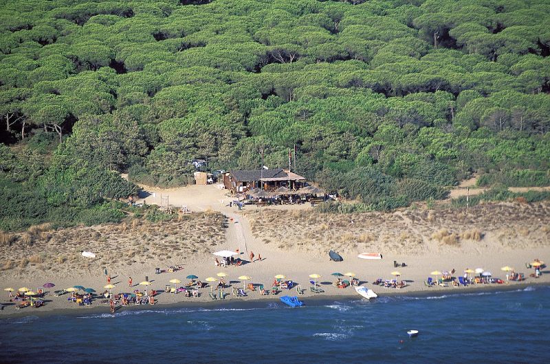 spiaggia-mare-pineta-fuori-rotta