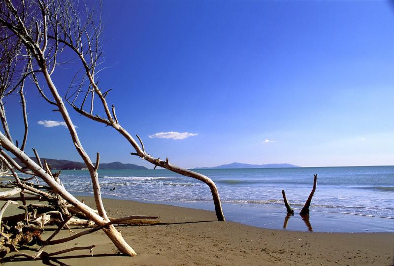 spiaggia-parco-mare-inverno