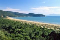 parco-mare-spiaggia-cala-forno-pineta