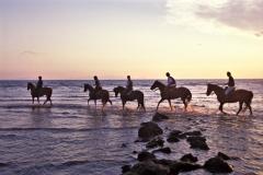 cavalli-mare-tramonto-sport-36
