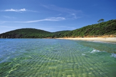 la spiaggia di Cala Violina